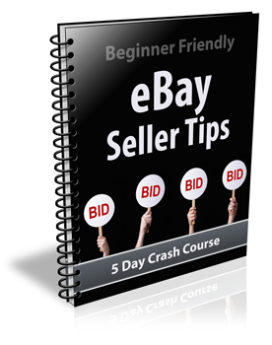 Ebay Seller Tips PLR Newsletter