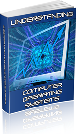 Understanding Computer Operating Systems - PLR