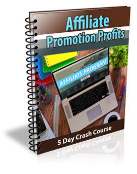 Affiliate Promotion Profits PLR Newsletter
