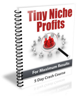 Tiny Niche Profits PLR Newsletter