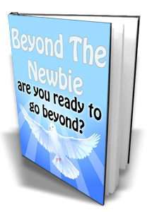 Beyond The Newbie