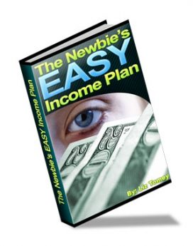 The Newbies Easy Income Plan