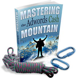 mastering the adwords cash mou