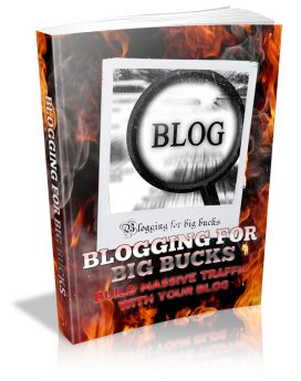 blogging for big bucks